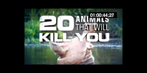 Title sequence from TV show with a hippo.